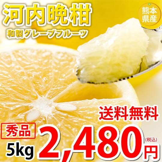 河内晩柑 文旦 みかん 送料無料 秀品 5kg M〜2L 和製グレープフルーツ お取り寄せ 熊本県産 ジューシーオレンジ 美生柑
