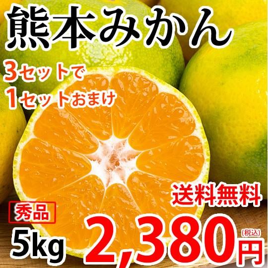 みかん 5kg 熊本みかん 送料無料 秀品 2S〜L 3セット購入で1セットおまけ 熊本県産 極早生みかん お取り寄せ 蜜柑 ミカン