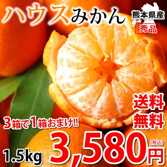 みかん ハウスみかん 送料無料 熊本県産 1.5kg 3箱購入で1箱おまけ 蜜柑 ミカン 温室みかん ギフト 贈答 御中元 フルーツ