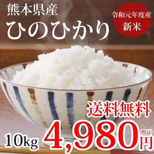 ひのひかり 米 送料無料 10kg 令和元年産 新米 熊本県産 お米 白米 玄米 コシヒカリ 森のくまさん