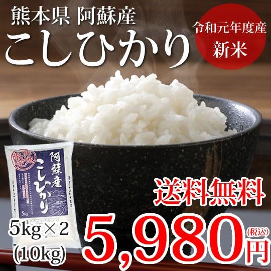 こしひかり 10kg 5kg×2 米 送料無料 令和元年産 新米 熊本県阿蘇産 地域限定米 お米 新米 こめ ひのひかり