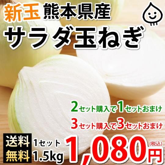 玉ねぎ サラダ玉ねぎ 送料無料 新玉 1.5kg S〜L 熊本県産 2セットで1セットおまけ 3セットで3セットおまけ お取り寄せ 玉葱 たまねぎ 野