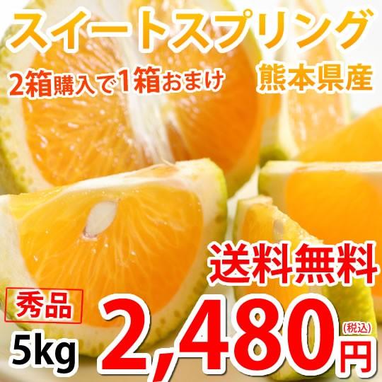 スイートスプリング 5kg みかん 送料無料 秀品 S〜2L 2箱購入で1箱おまけ 熊本県産 爽やかな甘さと香り 蜜柑 温州みかん 八朔