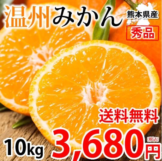 みかん 10kg 送料無料 温州みかん 秀品 熊本県産 蜜柑 ミカン
