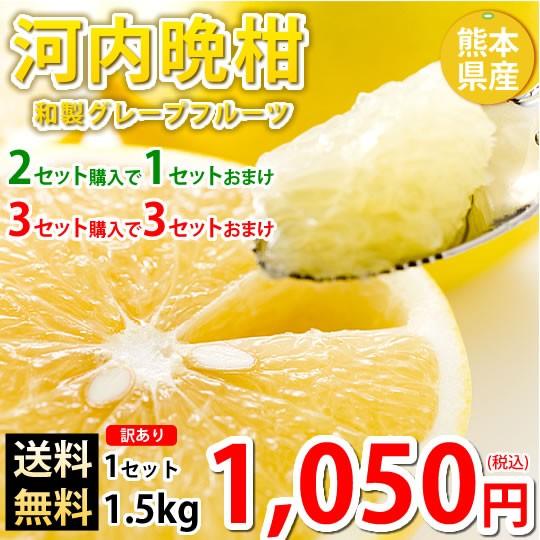 河内晩柑 文旦 みかん 訳あり 送料無料 和製グレープフルーツ 1.5kg S〜3L 2セットで1セット 3セットで3セットおまけ お取り寄せ 晩柑 熊