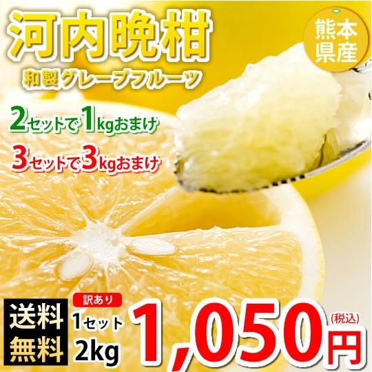 河内晩柑 文旦 みかん 訳あり 送料無料 和製グレープフルーツ 2kg S〜3L 2セットで1kgおまけ 3セットで3kgおまけ 晩柑 熊本県産 美生柑