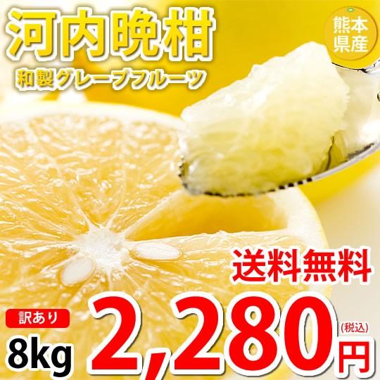 河内晩柑 8kg 文旦 みかん 訳あり 送料無料 S〜3L 和製グレープフルーツ お取り寄せ 晩柑 熊本県産 美生柑