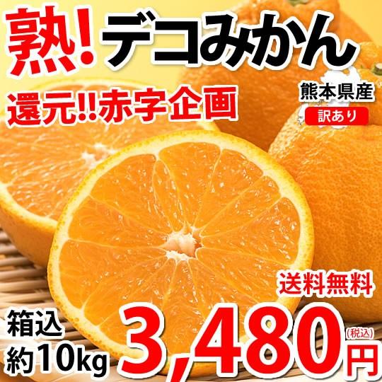 デコポン 同品種 訳あり デコみかん 10kg 箱込 (内容量9kg+補償分500g) 送料無料 熊本県産 フルーツ お取り寄せ みかん ミカン 蜜柑 不知