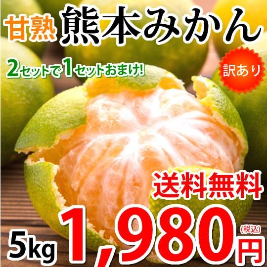みかん 5kg 熊本みかん 訳あり 送料無料 2S〜3L 2セットで1セットおまけ 熊本県産 極早生みかん 訳ありみかん 蜜柑 ミカン