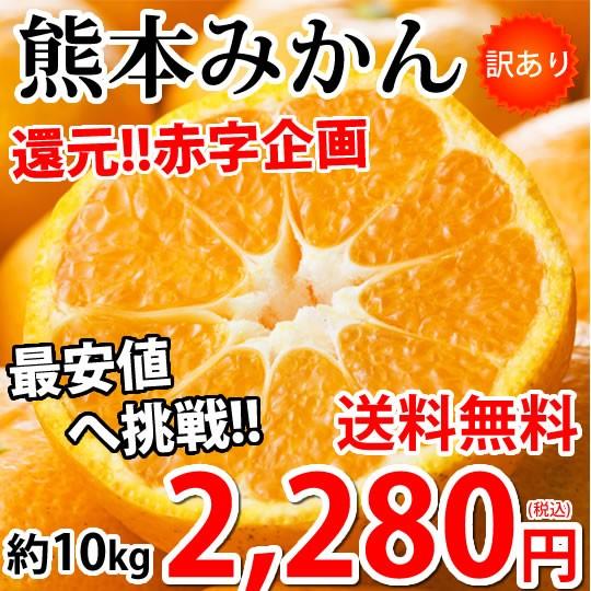 みかん 10kg 送料無料 訳あり 箱込10kg(内容量9kg+補償分500g) 熊本みかん 送料無料 蜜柑 ミカン