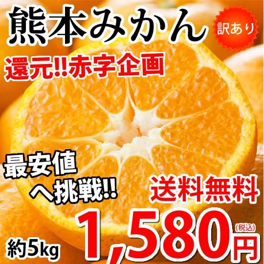 みかん 5kg 送料無料 訳あり 箱込(内容量4kg+補償分500g) 熊本みかん 蜜柑 ミカン