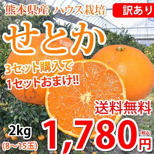 せとか みかん 訳あり 送料無料 2kg 3セット購入で1セットおまけ ハウス栽培 希少品種 熊本県産 せとかみかん 蜜柑 オレンジ 清見 アンコ
