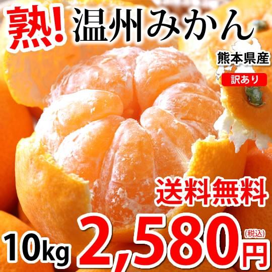 みかん 10kg 訳あり 温州みかん 送料無料 熊本みかん 熊本県産 蜜柑 ミカン