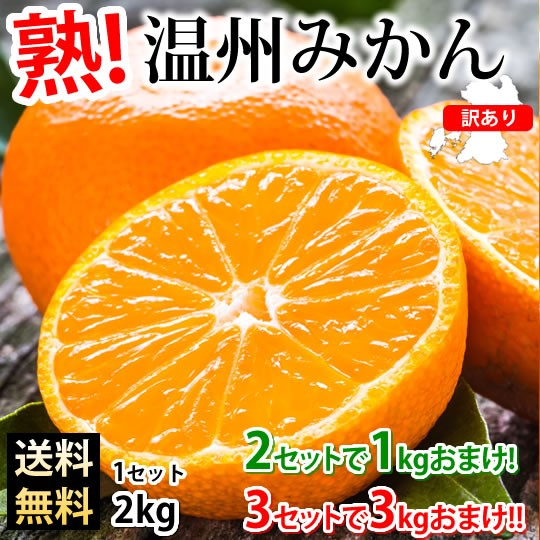 みかん 温州みかん 送料無料 訳あり 2kg 2セット購入で1kgおまけ 3セット購入で3kgおまけ 熊本県産 熊本みかん 蜜柑 ミカン