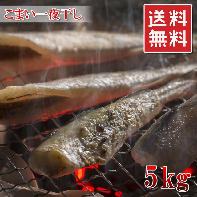送料無料【北海道産 こまい一夜干し 5kg(225匹前後)】ビールのお供にぜひどうぞ 干物【新鮮コマイ 氷下魚】【冷凍】