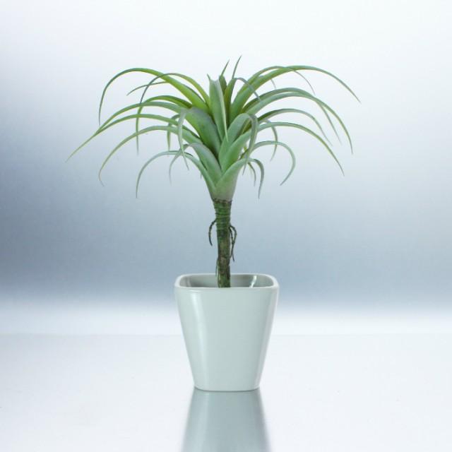 【人工観葉植物 フェイクグリーン】【ドラセナ】【造花・光触媒・おしゃれ・本物みたい・手間いらず・リビング・キッチン】【常温】