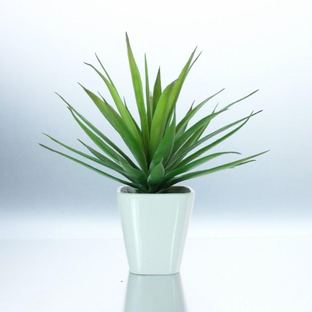 【超ゲリラSALE!】【人工観葉植物 フェイクグリーン】【センチュリー】【造花・光触媒・おしゃれ・本物みたい・手間いらず・リビング・