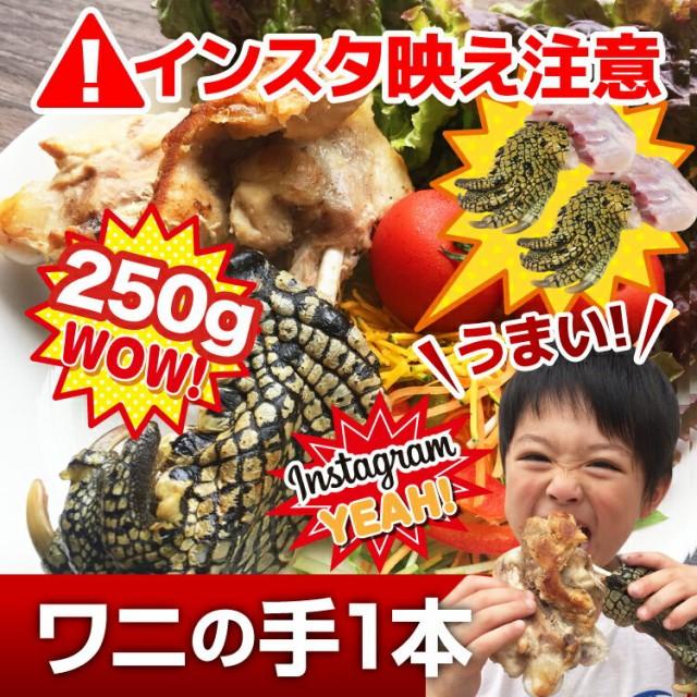 送料無料【本物のワニの肉 爪付き1本 250g以上 】インスタに映える 面白い サプライズ でもヘルシーで美味しい【ワニ肉】【冷凍】
