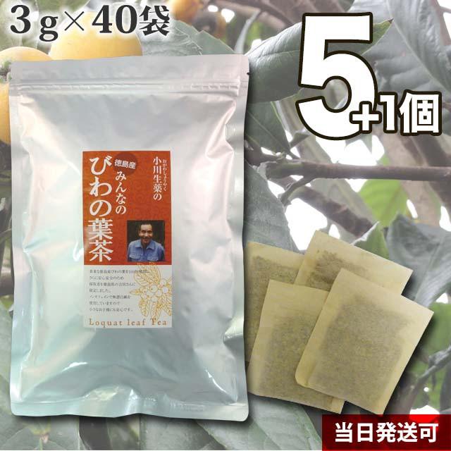 【送料無料】厳選小川生薬 徳島産みんなのびわの葉茶 3g×40袋 5個セットさらにもう1個プレゼント