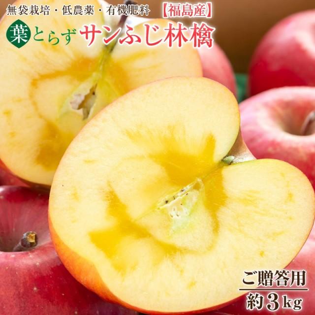 サンふじ 葉とらず ふじ 林檎 リンゴ りんご 福島産 葉とらず サンふじ林檎 ご贈答用約3kg(7〜11玉)【送料無料】お歳暮 ご贈答 ギ