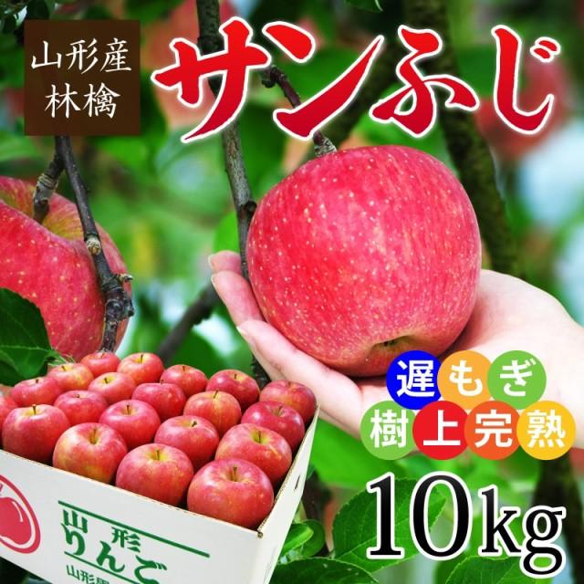 山形産遅もぎ収穫樹上完熟サンふじ林檎 約10kg(24〜40玉前後) ※林檎 リンゴ りんご ふじ フジ 蜜 産直 お歳暮 ギフト のし可