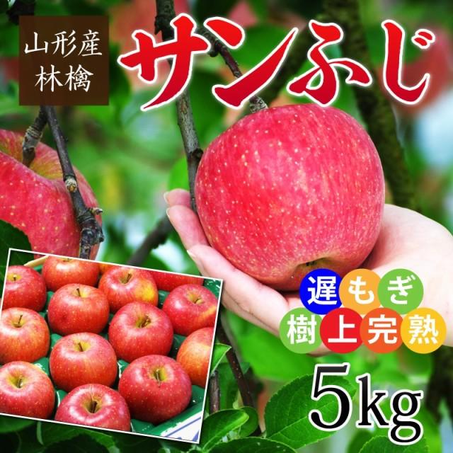 山形産遅もぎ収穫樹上完熟サンふじ林檎 約5kg(12〜20玉前後) ※林檎 リンゴ りんご ふじ フジ 蜜 産直 お歳暮 ギフト のし可