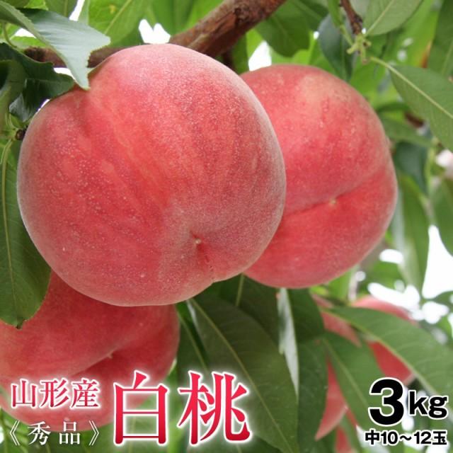 桃 白桃 約3kg秀品(10〜12玉前後)中玉 送料無料 山形県産桃、もも、白桃、モモ、ギフト対応 のし対応