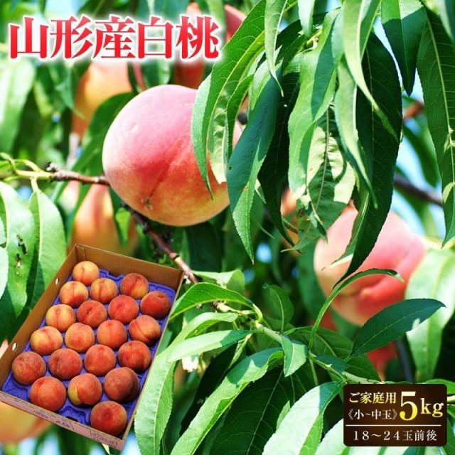 桃 山形県産白桃約5kg(18〜24玉前後)小〜中玉 ご家庭用 送料無料 桃 もも 白桃 モモ