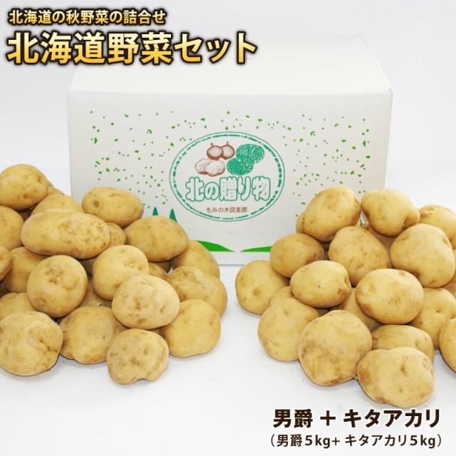 新じゃがいも ジャガイモ 芋 イモ 北海道産 男爵芋+キタアカリ(各約5kg)計約10kg 2点セット 男爵 きたあかり 減農薬栽培 送料無料
