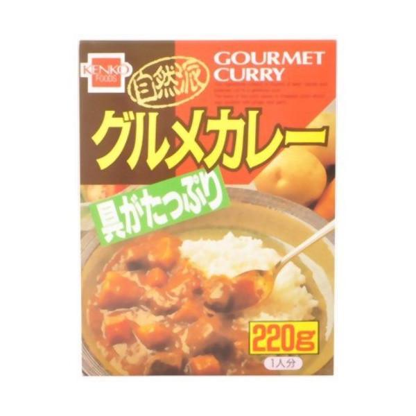 健康フーズ 自然派グルメカレー レトルト(220g)[レトルト食品]