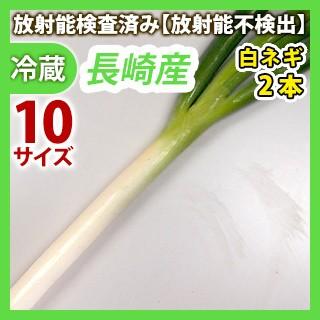 白ネギ2本(冬ネギ) 長崎県産 同梱サイズ10【安心・安全の放射能検査済み!セット同時購入で送料無料】