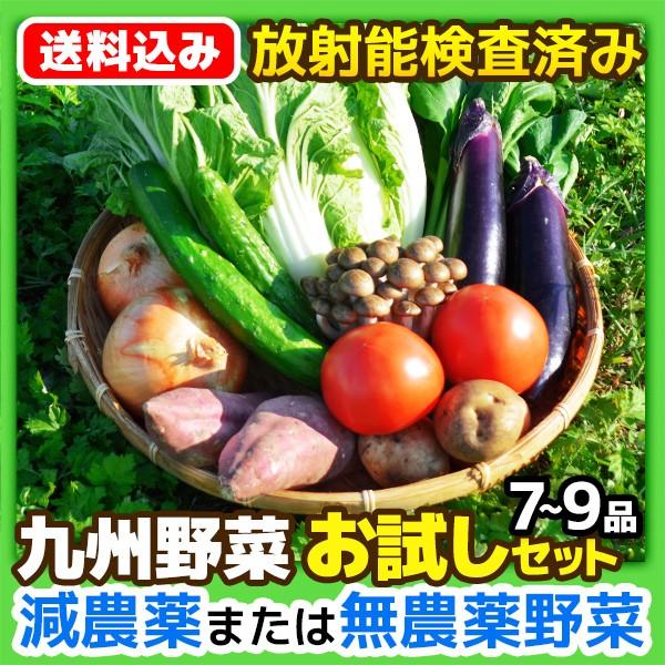 【送料込み】九州 野菜[お試し]セット 7〜9品(おまかせ) 減農薬 無農薬 有機放射能検査済み 野菜セット 【冷蔵・常温品を同梱可】
