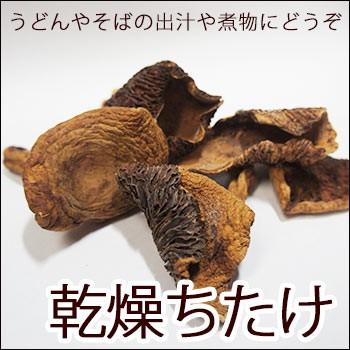 ちち茸 乾燥 50g ×3袋セット ちたけ 乳茸 チチタケ キノコ きのこ なまため 祝 ギフト mash 茸 そば うどん 業務用 常温 *