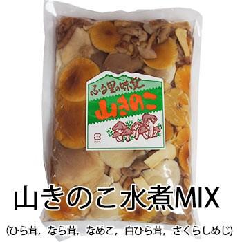 山きのこ ミックス 水煮 ミックス 300g×2袋 セット 茸 木野子 mash 祝 ギフト ひら茸 なら茸 なめこ 白ひら茸 さくらしめじ 常温 *