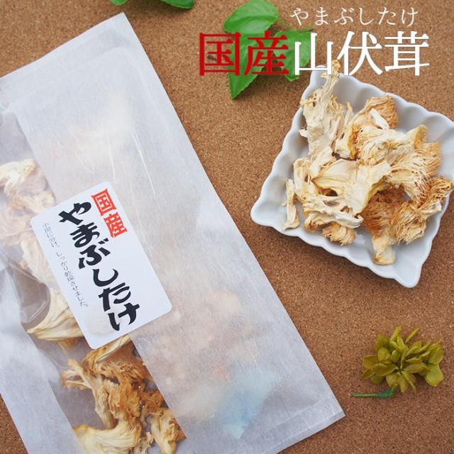 ヤマブシタケ ×2袋 乾燥 国産 メール便 山伏茸