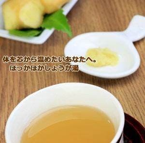 しょうが湯300g メール便 生姜 ジンジャー 生姜茶 ショウガ湯 なまため 粉 粉末 生姜パウダー パウダー 祝 ギフト ショウガ ショウガオー