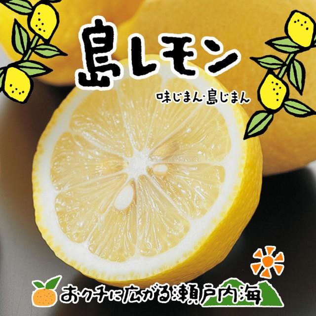 希望の島 無農薬レモン サイズ込 2kg グリーンレモン ユーレカレモン 国産 愛媛 中島産
