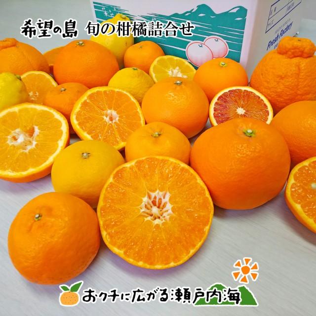 【訳あり】希望の島 旬の柑橘詰合せ 2kg みかん 中島まどんな(紅まどんな同品種) だいだい レモン 天草 ポンカン 伊予柑 はれひめ はるみ