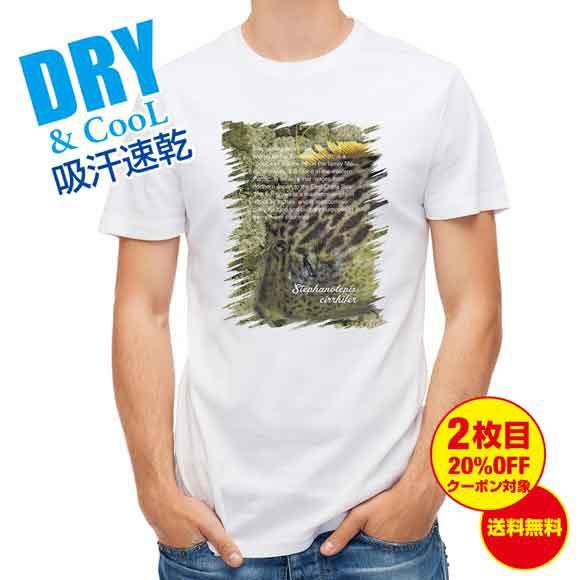 釣り Tシャツ アウトドア カワハギ 釣り 魚 ルアー T シャツ メンズ 半袖 ロゴ 文字 春 夏 秋 インナー 安い 面白い 大きいサイズ 洗濯
