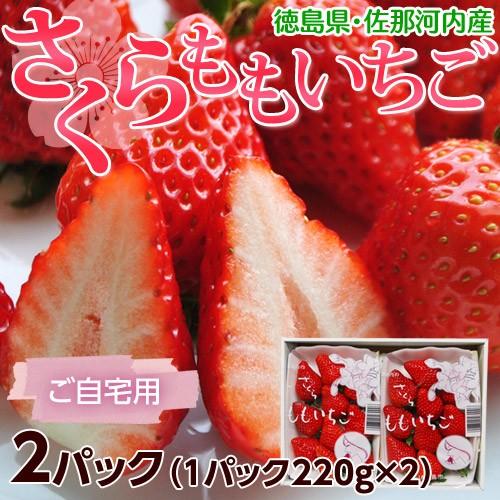いちご イチゴ 苺 徳島県佐那河内 さくらももいちご A〜2A又はL〜2L 約220g×2パック ※冷蔵