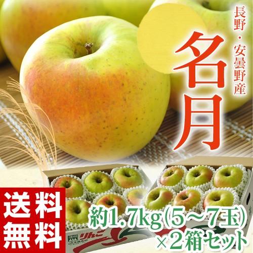りんご リンゴ 林檎 長野県 安曇野産 名月 1箱 約1.7kg (5〜7個入)×2箱 送料無料