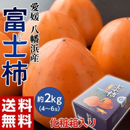 ギフト 愛媛県産 富士柿 化粧箱入り 4〜6玉 約2kg 送料無料