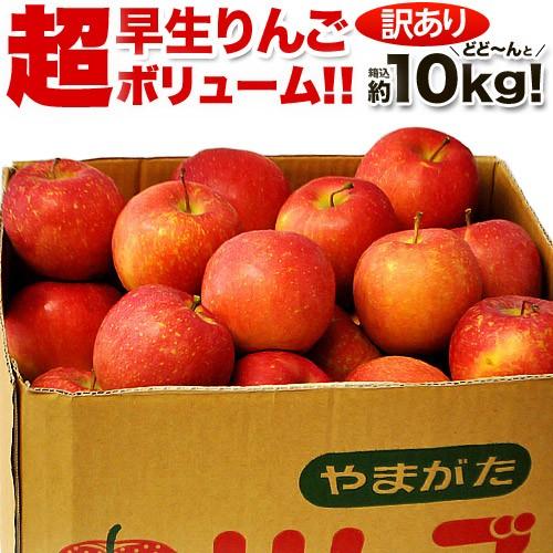 りんご リンゴ 林檎 山形県産 訳あり 早生りんご バラ詰め 約10kg(箱込重量) 茶箱 (26〜54玉前後) ご自宅用 送料無料
