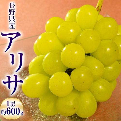 葡萄 ぶどう ブドウ 飯塚さんの葡萄 アリサ 長野県産 1房(約600g) 常温 送料無料 産地直送 高級 ギフト 贈り物