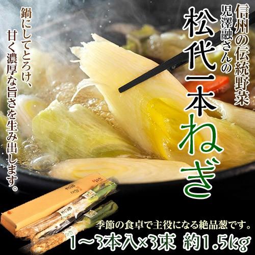 ねぎ ねぎ ネギ 野菜 長野県産 伝統野菜認定 松代一本ねぎ 鍋に最適 1箱 1〜3本入×3袋 約1.5kg