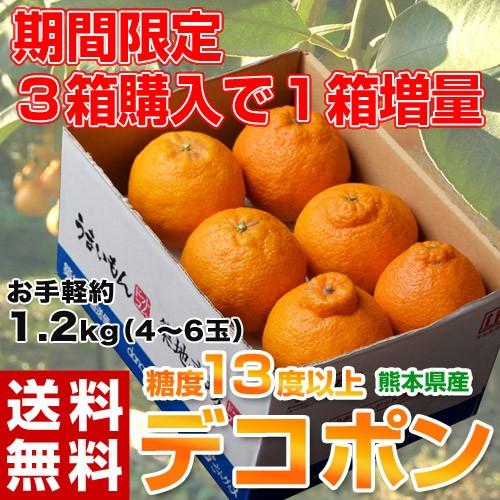 【3箱買えば1箱オマケ】デコポン 熊本県産 約1.2kg (4〜6玉) 送料無料 でこぽん