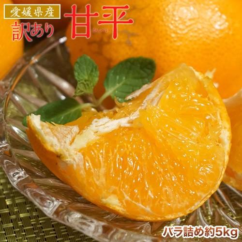 柑橘 甘平 みかん 愛媛県産 訳あり品 甘平 約5kg L〜4L 送料無料 (傷・スレ有り)