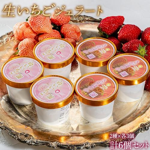 big_dr アイス 氷菓 苺 イチゴ 『生いちごジェラート』 白いちご・さがほのか 2種 各3個 合計6個セット 1個:110ml 冷凍 送料無料