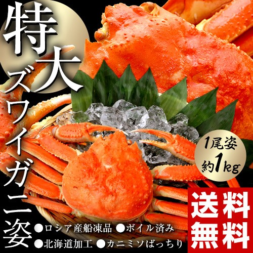【限定20セット】ズワイガニ 姿 特大1尾 約1キログラム 蟹 カニ かに ズワイ蟹 お歳暮 冷凍 送料無料