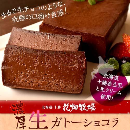 ケーキ チョコレート 花畑牧場 濃厚 生 ガトーショコラ 480g×2本セット 業務用 おやつ チョコケーキ 冷凍